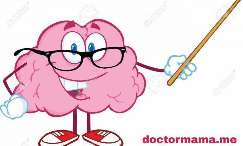 ما أهمية الجهاز العصبى - كيف نحافظ على جهازنا العصبى