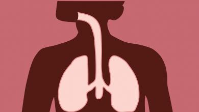 كيف نحافظ على الجهاز التنفسي